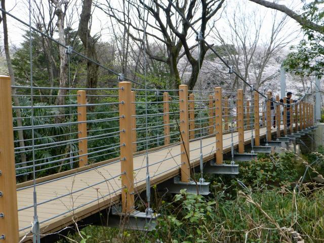 砧公園の吊り橋9
