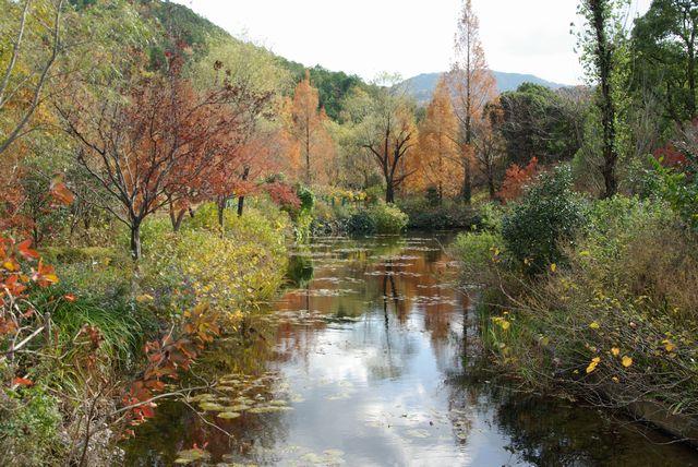 モネの庭 秋