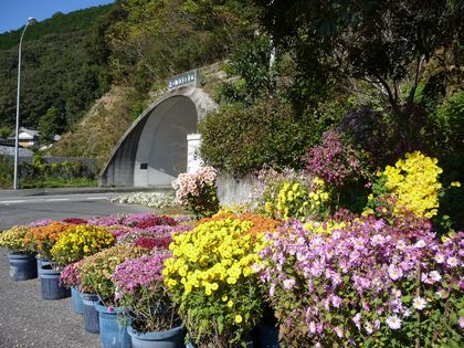 上ノ加江トンネル