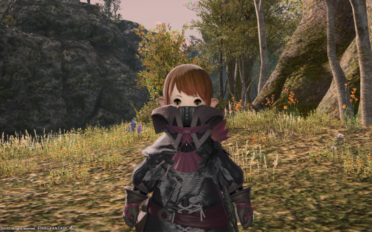 FF14_201311_031.png