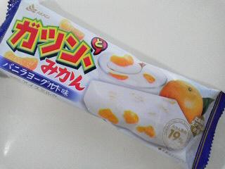 ガツンとみかんバニラヨーグルト味 (1)