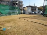 sakuragaokagreen_green