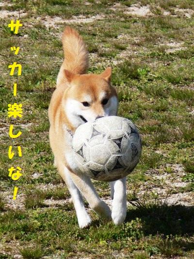 サッカーして見たり