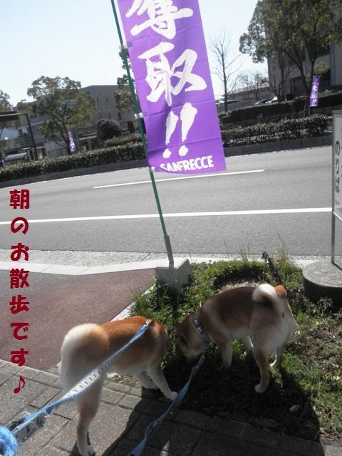 お散歩で~す!