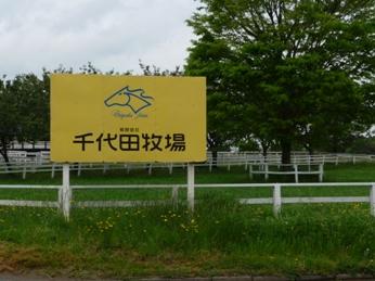 千代田牧場