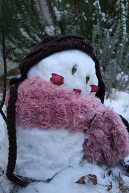 なかなか上出来な雪だるま~!! かわいいじゃないの。
