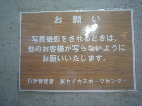 P1060017.jpg