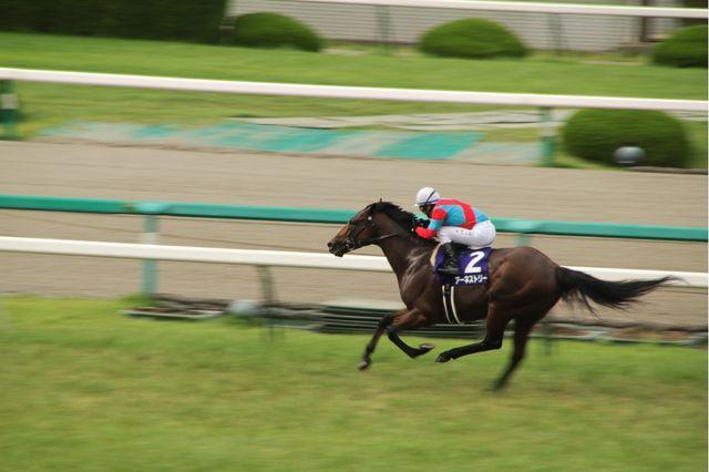 2011宝塚記念優勝馬 アーネストリー