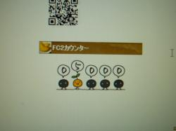 P1120619_convert_20101003150509.jpg