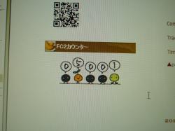 P1120620_convert_20101003150553.jpg
