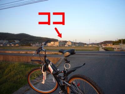 P1200822_convert_20120414183904.jpg