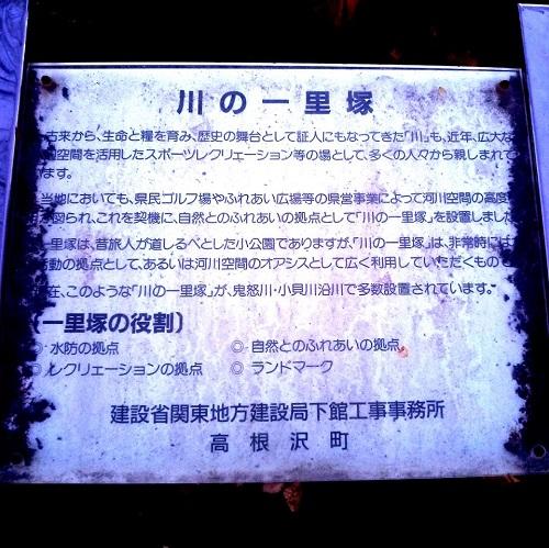 夕空と冬桜 !? 川の一里塚 !?⑦