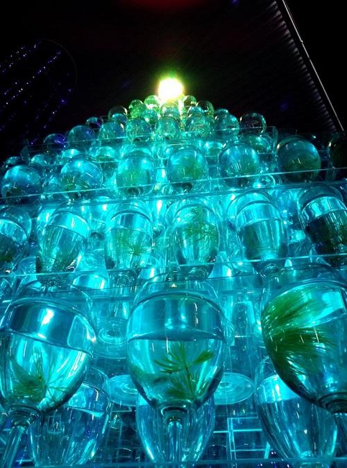 The 透明魚 with Light Acuario 2013⑥