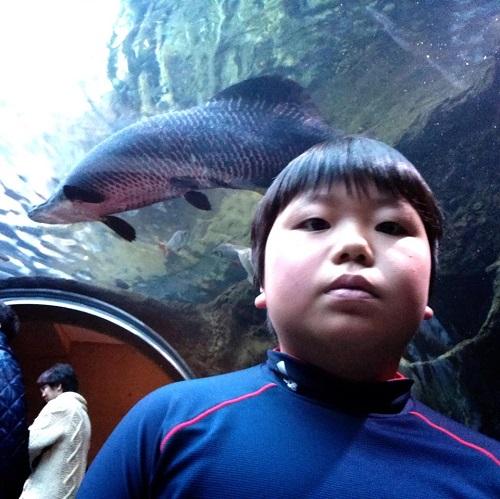 川の水族館『なかがわ水遊園』いいですよぉ!④