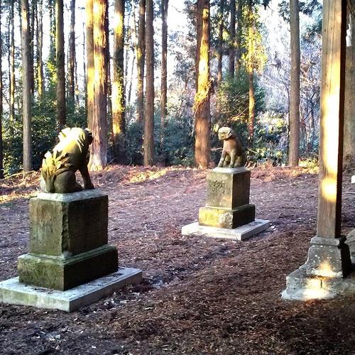 上田原町西組 鹿島神社へ!⑦