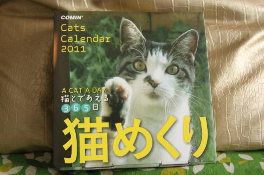 猫めくり1