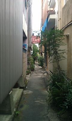 IMAG0752.jpg