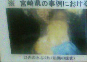 taketomi (47)
