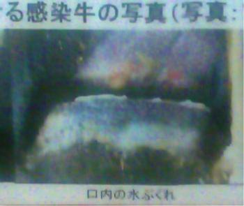 taketomi (48)