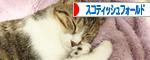 IMG_4655-1.jpg