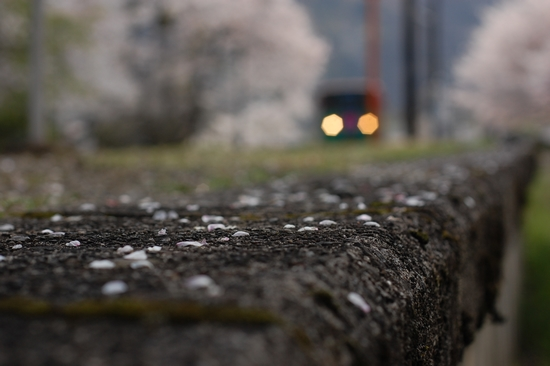 03raioto.jpg