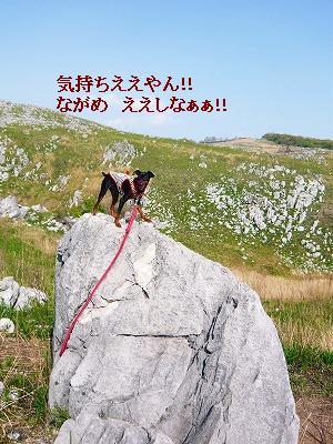 220504akiyosidai (1)
