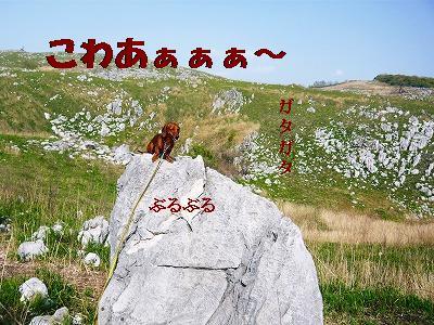 220504akiyosidai (2)