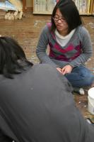 2011 4 たまご 026_R