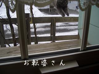 tyu_20110322160655.jpg