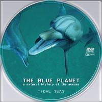 blue6.jpg