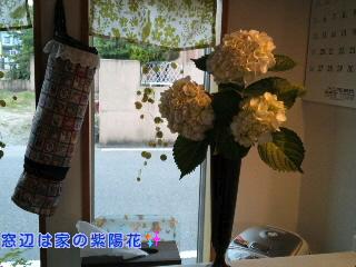 moblog_330e78a1.jpg