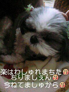 moblog_684d8370.jpg