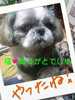 moblog_95547685.jpg