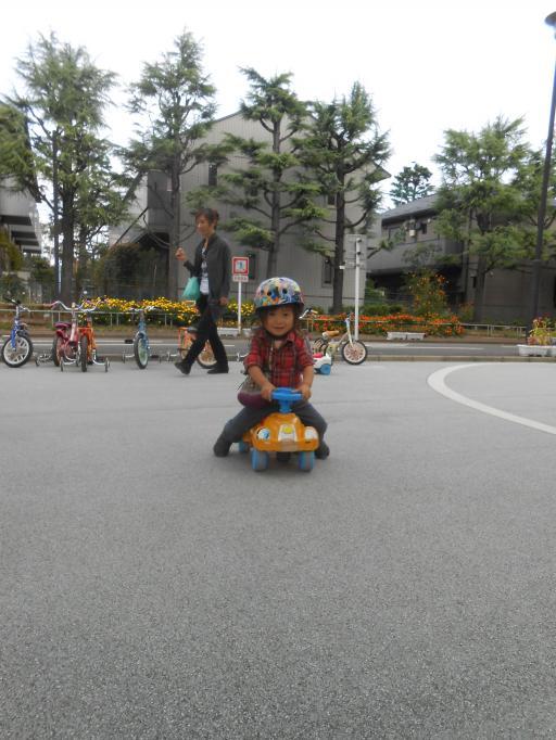 DSCN0601_convert_20121012222729.jpg