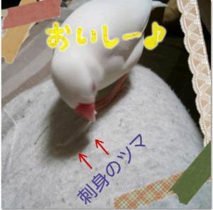 繧ュ繝」繝励メ繝」_convert_20130421083305