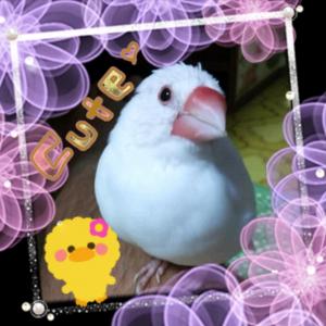 繧ュ繝」繝励メ繝」_convert_20130622143258
