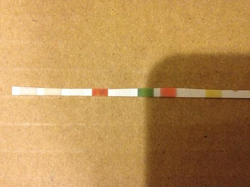 3月29日水質測定
