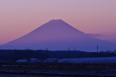 大規模水田より富士 2014 1119(13)