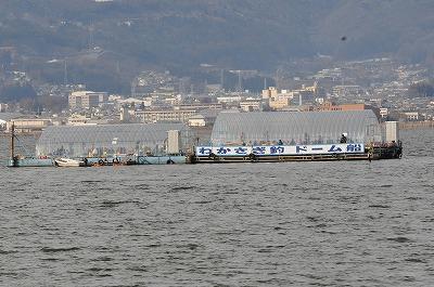 諏訪湖公魚釣り (1)
