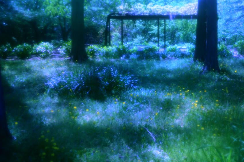 FC2_公園_0027