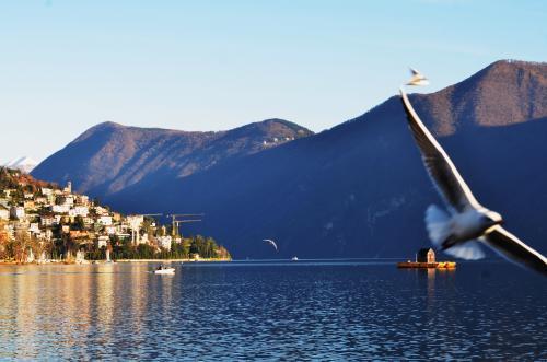 DSC 8364 convert 20121210043301 - スイスの休日