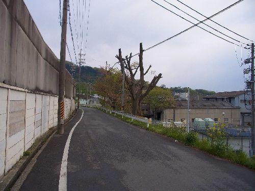 2013_04_11_16_28;_RIMG0009