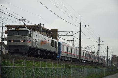 26110.jpg