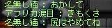 Maple110924_134609.jpg