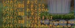 Maple110926_050032.jpg