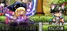 Maple111001_021803.jpg