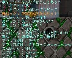 Maple111009_023100.jpg