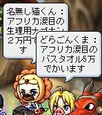 Maple111011_182032.jpg