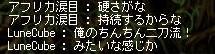 Maple111024_230410.jpg