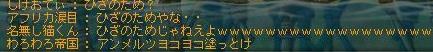 Maple111108_232914.jpg